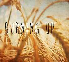 Burning Up by Denise Abé