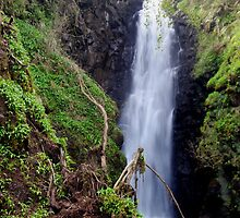 Cranny Falls by Smaxi