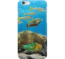 School of tropical fish above coral iPhone Case/Skin