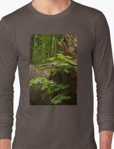 Along the path - Mud Lake, Ottawa, Ontario Long Sleeve T-Shirt