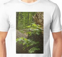 Along the path - Mud Lake, Ottawa, Ontario Unisex T-Shirt