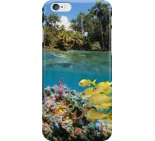 Colorful underwater marine life near tropical coast iPhone Case/Skin
