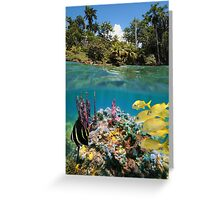 Colorful underwater marine life near tropical coast Greeting Card