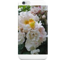 Chick on Rose Bush iPhone Case/Skin