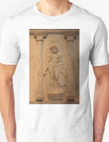 Ancient Male Torso T-Shirt