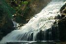 Waterfall in Deleware by Svetlana Sewell