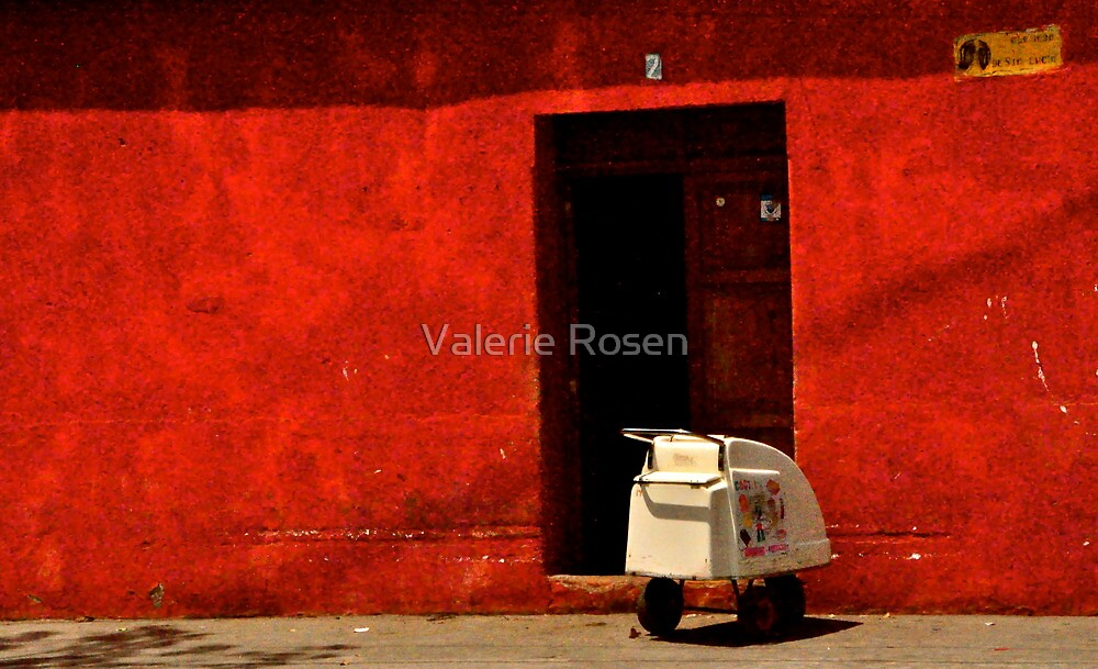 Home Delivery by Valerie Rosen