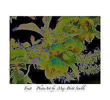 """Fruit"" Photographic Print"