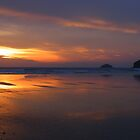 Cornwall: Polzeath Beach, Awash With Colour by Rob Parsons