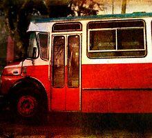 Vieja Bus by Kelly J  Parsons