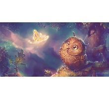 Owlie the Cute Owlet Photographic Print
