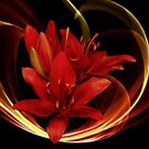 Red Lilies by imagesbyjd