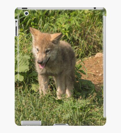 Timber wolf pup iPad Case/Skin