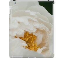 Peony - Ottawa, Ontario iPad Case/Skin