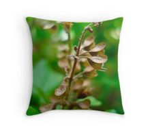 All Dried Up Throw Pillow