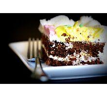 The Last Piece of Cake Photographic Print