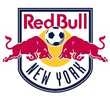 new york red bulls by makelele888