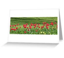 Red Tulip Parade in Chelmsford Greeting Card