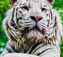 White Tiger by spookydooky