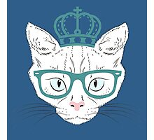 Hipster Kitty Photographic Print