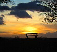 Bench in Richmond Park by DExPIX