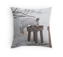 Its a Leap Year!!  Ottawa, ON Throw Pillow