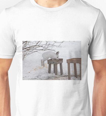 Its a Leap Year!!  Ottawa, ON Unisex T-Shirt