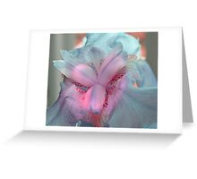 Springs flowers Greeting Card