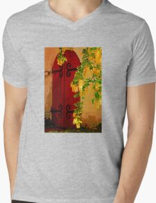 Doorway to Another World Mens V-Neck T-Shirt
