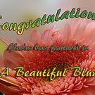 Beautiful Blur banner challenge by vigor