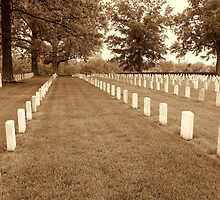 Remembering our brothers and sisters by wallace66
