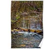 Rattlesnake Creek, May Day Poster
