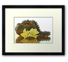 Royal Poinciana  Seed Lei Framed Print
