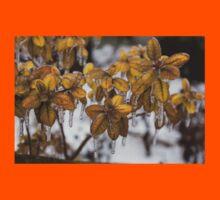 Ice Storm 2013 - Frozen Azalea Leaves  Kids Tee