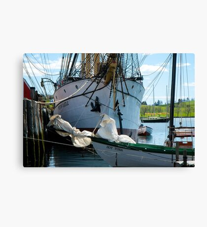 The Barque Picton Castle Canvas Print