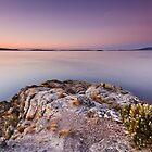 Dawn near Ninepin Point, Tasmania by Chris Cobern