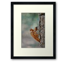 Up and Dead Framed Print
