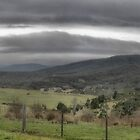 A Wintery Day in Riddells Creek ( 1 ) by Larry Lingard-Davis