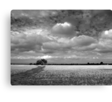 Scary Tree - Wilmington Wheat Field Canvas Print