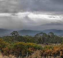 A Wintery Day in New Gisborne ( 2 ) by Larry Lingard-Davis