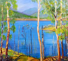 Hinze Dam Numinbah Valley Gold Coast Hinterland  by Virginia McGowan