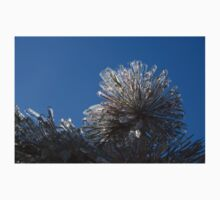 Ice Storm 2013 - Pine Needle Flower Kids Clothes