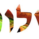 Shalom 17 - Jewish Hebrew Peace Letters by Sharon Cummings