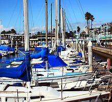 Redondo Beach Harbor 1118 by eruthart