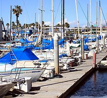 Redondo Beach Harbor 1119 by eruthart