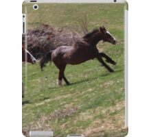 Apache and Count   iPad Case/Skin