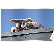 Pelican 1182 Poster