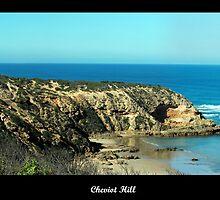 Overlooking Cheviot Beach by Melanie Conroy