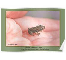 Some Enchanted Prince His Future is in Your Hand—Save Wetlands B Poster