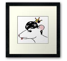 Stray Rat Framed Print